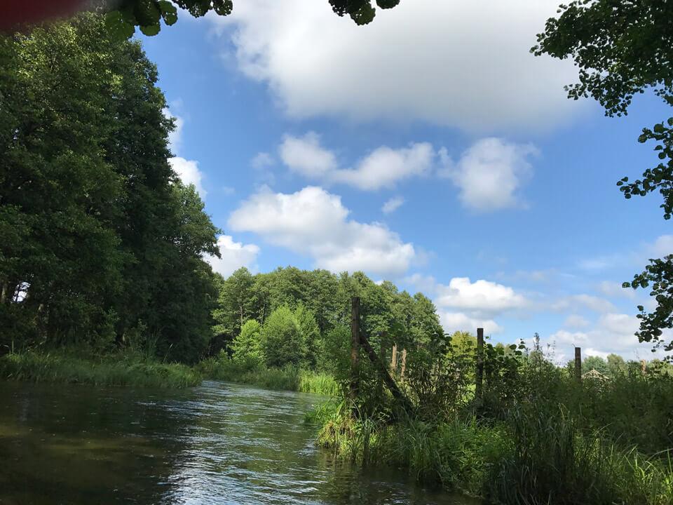 Spływy kajakowe Kaszuby - Borsk - Wojtal